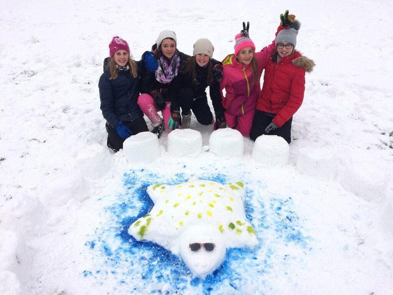 Sněhuláci pro Afriku