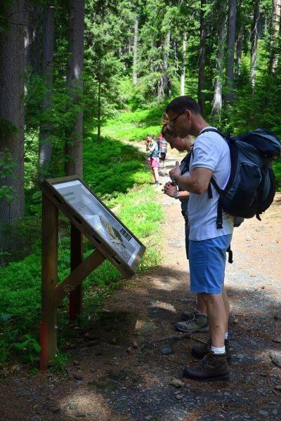 Exkurze do Národní přírodní rezervace Praděd vJeseníkách